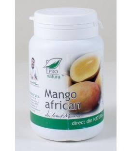 Mango african, 60 capsule