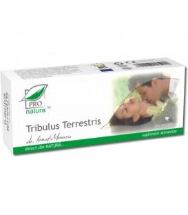 Tribulus terrestris, 30 capsule