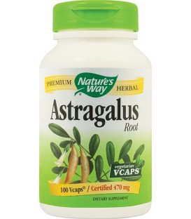 Astragalus Root 470 mg, 100 capsule