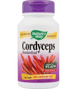 Cordyceps SE, 60 capsule