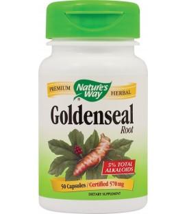 Goldenseal, 30 capsule