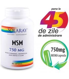 MSM 750 mg, 90 capsule