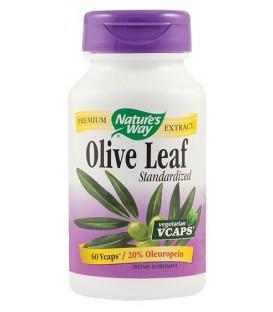 Olive Leaf SE (20% oleuropein), 60 capsule