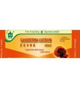Ganoderma Lucidum, 10 Flacoane *10 ml