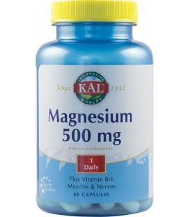 Magnesium, 500 mg 60 capsule