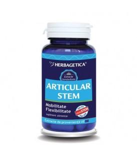Articular Stem, 60 capsule