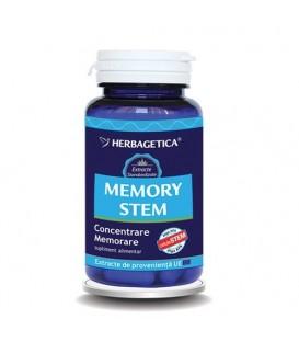 Memory Stem, 60 capsule