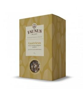 Gastricus Ceai, 90 grame (Stomac Sanatos & Digestie Perfecta)