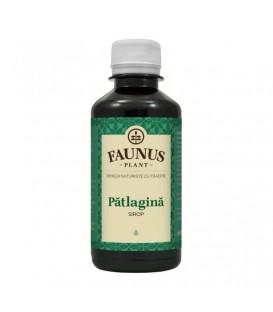 Sirop Patlagina, 200 ml