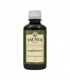 Tinctura Anghinare, 200 ml
