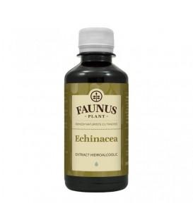 Tinctura Echinaceea, 200 ml