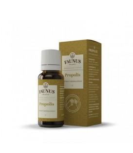 Tinctura Propolis 30 %, 20 ml