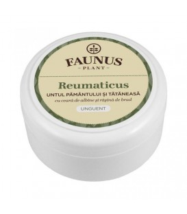 Unguent Reumaticus, 100 ml (Untul Pamantului & Tataneasa)