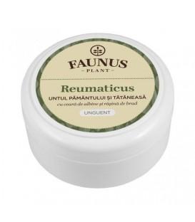 Unguent Reumaticus, 100 ml (Untul Pamantului & Tataneasa)