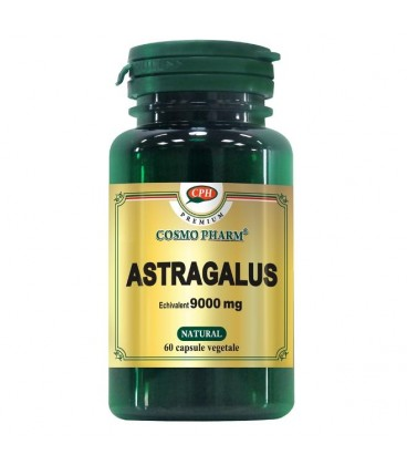 Astragalus Extract, 60 capsule