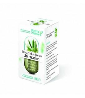 Extract din frunze de maslin, 60 capsule