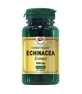 Echinacea Extract 500 mg, 60 capsule