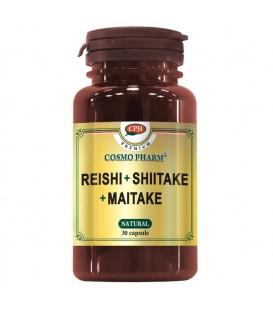 Premium Reishi Shitake Maitake, 30 capsule