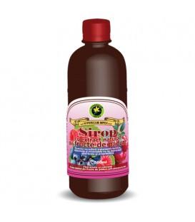 Sirop din fructe de padure, 500 ml