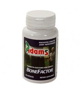 BoneFactor, 60 capsule