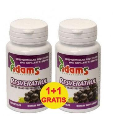Adk prostata rezistenta hormonala