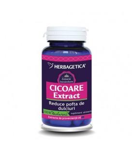 Cicoare Extract, 30 capsule
