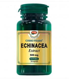 Echinaceea Extract  500 mg, 30 capsule