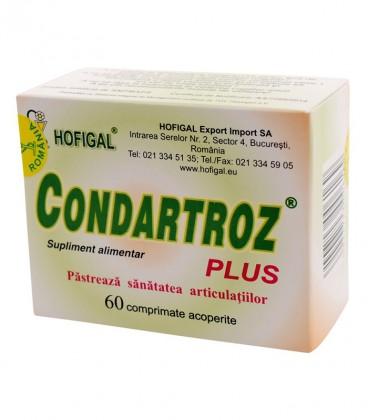 Condartroz Plus, 60 comprimate
