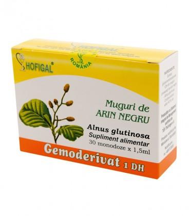 Gemoderivat Muguri de Arin Negru, 30 monodoze x 1,5 ml