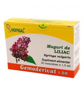 Gemoderivat din muguri de liliac, 30 monodoze x 1.5 ml
