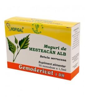 Gemoderivat din muguri de mesteacan alb, 30 monodoze x 1.5 ml