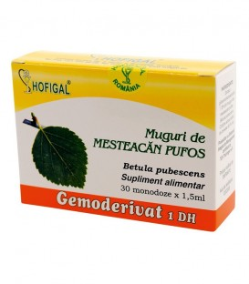 Gemoderivat de mesteacan pufos - muguri, 30 monodoze