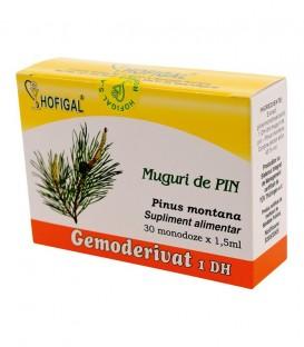 Gemoderivat din muguri de pin, 30 monodoze x 1.5 ml