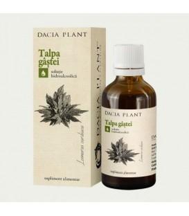 Talpa Gastii (tinctura), 50 ml