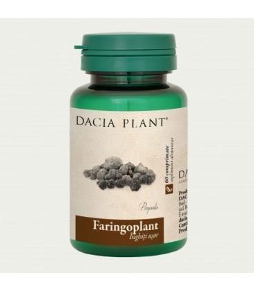 Faringoplant, 60 tablete