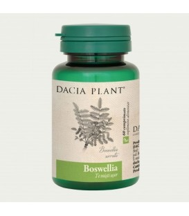 Boswellia, 60 tablete