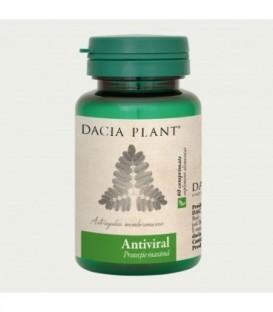 Antiviral echinacea & astragalus, 60 tablete