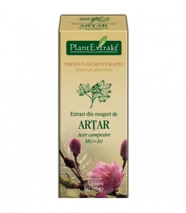 Extract din muguri de artar, 50 ml