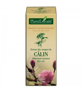 Extract din muguri de calin, 50 ml