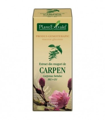 Extract din muguri de carpen, 50 ml