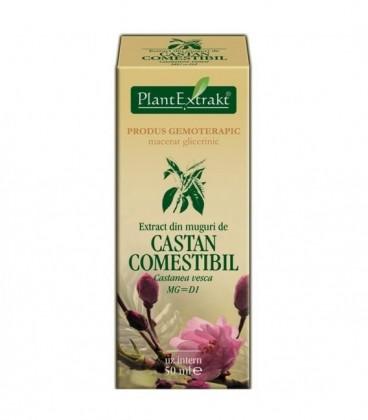 Extract din muguri de castan comestibil, 50 ml