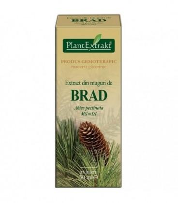 Extract din muguri de brad, 50 ml