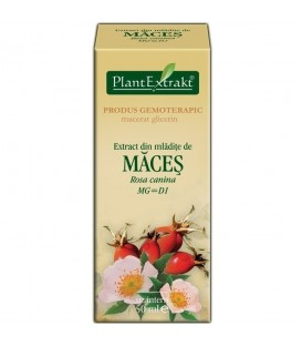 Extract din mladite de maces, 50 ml