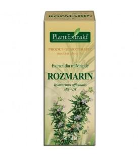 Extract din mladite de rozmarin, 50 ml