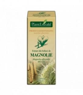 Extract din muguri de magnolie, 50 ml
