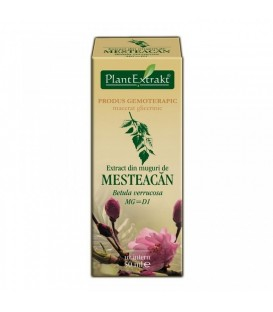 Extract din muguri de mesteacan, 50 ml
