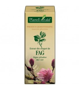 Extract din muguri de fag, 50 ml