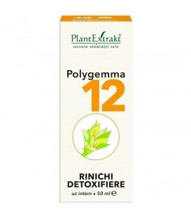 Polygemma 12 - Rinichi Detoxifiere, 50 ml