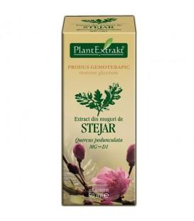 Extract din muguri de stejar, 50 ml