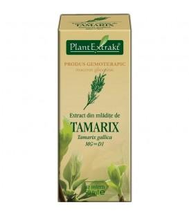 Extract din mladite de tamarix, 50 ml